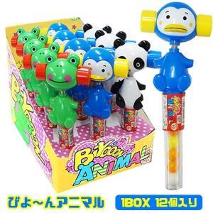 びよーんアニマル 1BOX(12個入り)お菓子|sanyodo-shop