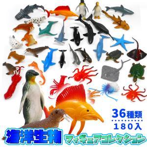 海洋生物フィギュアコレクション 180個セット|sanyodo-shop