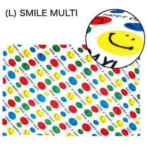 フランネル ブランケット FLANNEL F/B (L) SMILE MULTI|sanyodo-shop