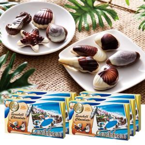 [送料無料] メキシコ土産 | カリビアン シーシェルチョコレート 6箱セット【172114】|sanyodo
