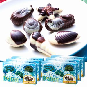 [送料無料] パラオお土産 | パラオ シーシェルチョコレート ドルフィン紙袋付き 6箱セット【174065】|sanyodo
