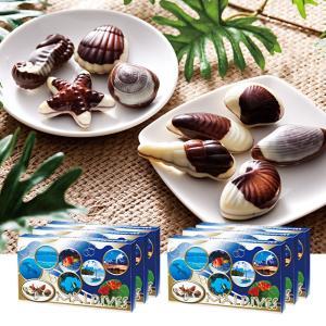 [送料無料] モルディブお土産 | モルディブ シーシェルチョコレート ドルフィン紙袋付き 6箱セット【174041】|sanyodo