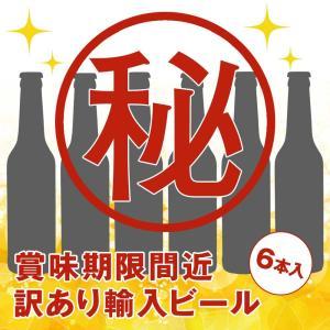 [訳あり][5000円以上で送料無料] 輸入ビールアソート 6本セット【R06110】|sanyodo