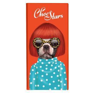 [5000円以上で送料無料] チョックスターズ ChocStars | ペッツ・ロック Pets Rock ダークチョコレートバー スポット Spots【105686】|sanyodo