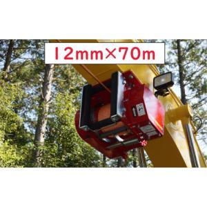 林業集材用繊維ロープ 東京製綱繊維ロープ エースライン 12mm 70m 林業 集材 国内メーカー製 安全向上 軽い|sanyosyoji