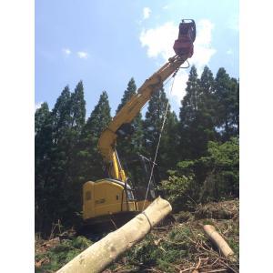 林業集材用繊維ロープ 東京製綱繊維ロープ エースライン 12mm 70m |sanyosyoji|02