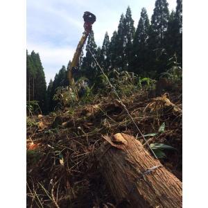 林業集材用繊維ロープ 東京製綱ロープ エースライン 12mm 70m |sanyosyoji|03