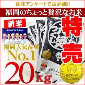 元気つくし 20kg(5kg×4) 平成29年産 金のめし丸...