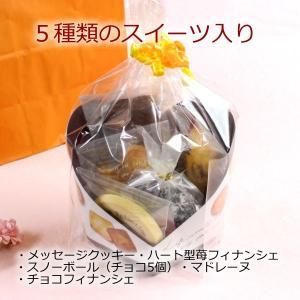 母の日メッセージ入りクッキーと焼き菓子セット sap