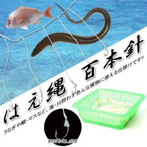 漁師さん御用達/ 魚捕獲漁具/ はえ縄100本針仕掛け  伝統漁法/|saponintaiga
