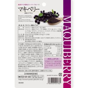マキベリー サプリメント マキベリー濃縮カプセル 120粒 ネコポス 送料無料|sapri-bk|05