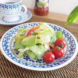 洋食器 プレート 皿 5枚セット ポーリッシュ garland ガーランド ケーキ皿 ポーランド食器|sara-cera-y