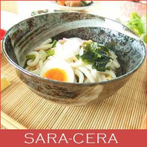 和食器 どんぶり 冷やしたぬきうどん 黒釉丼ぶり sara-cera-y