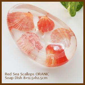 ソープディッシュ Red Sea Scallops ORANIC アジアン雑貨 インテリア アクリル 石鹸置き 洗面用品 sara-cera-y