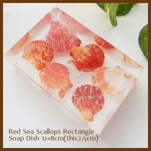 ソープディッシュ Red Sea Scallops Rectangle アジアン雑貨 インテリア アクリル 石鹸置き 洗面用品 sara-cera-y