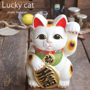 招き猫 白小判猫 8号 左手 金運 ギフト箱入り 常滑焼 置物 sara-cera