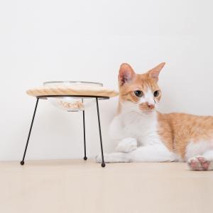 餌皿 フードボウル ペット用食器 食器台 エサ皿 エサ台 [〈MYZOO マイズー〉アウタースペース ペットフードボウルスタンド] サラサデザインストア