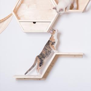 my zoo 猫 キャットタワー 木製 壁 猫家具 キャットウォーク キャット ステップ[〈 MYZOO マイズー〉ZONE(ゾーン)キャットステップ]#SALE_PT