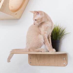 ■〈MYZOO マイズー〉LACK キャットステップ M 2枚入り ・サイズ:約 W30×D25×H...