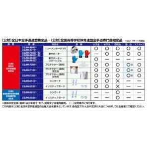 ミズノ mizuno 拳サポーター 全日本空手道連盟検定品(両手1組/空手) 23JHA866 10,800円以上お買い上げで送料無料|sarisa|04