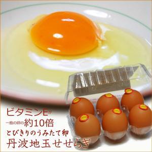 丹波地玉(地卵)せせらぎ 80個入|sasayama