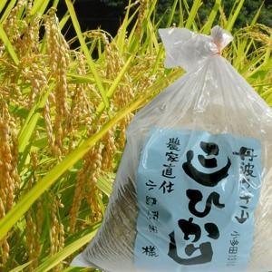コシヒカリ(丹波篠山産)3kg 農家直仕入|sasayama