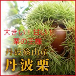 丹波栗(丹波篠山産)2Lサイズ 1kg sasayama