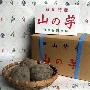 丹波山の芋(丹波篠山産)優品(箱入り)贈答 3キロ sasayama