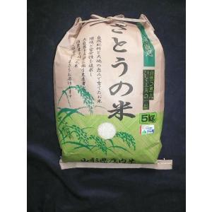 山形県庄内産 ササニシキ 精米5kg 特別栽培米 令和1年産