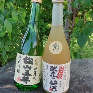 日本酒 お中元 ギフト 三井・蔵元のにごり梅酒 セット|satozake