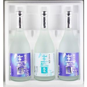 日本酒 お中元 ギフト 鳳鳴酒造 涼やかセット satozake