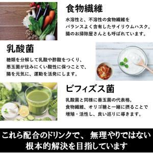 送料無料 CHO-スッキリ+おん(チョースッキリプラスオン) 30包 乳酸菌 ヒハツ 高麗人参 食物繊維 サイリウムハスク デキストリン 健康食品 サプリ|satuma|05