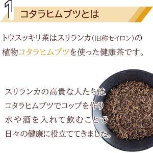 糖質制限 ダイエット ダイエットティー トウスッキリ茶 15包×2個セット コタラヒム カロリーカット 糖質制限 送料無料 ゆうパケット|satuma|05
