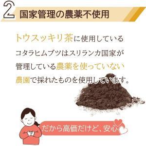 糖質制限 ダイエット ダイエットティー トウスッキリ茶 15包×2個セット コタラヒム カロリーカット 糖質制限 送料無料 ゆうパケット|satuma|07