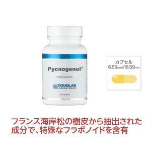 ポイント10倍 ダグラスラボラトリーズ ピクノジェノール 120粒 フラボノイド 松の樹皮 サプリメント 健康食品 送料無料〔7041-120〕|satuma