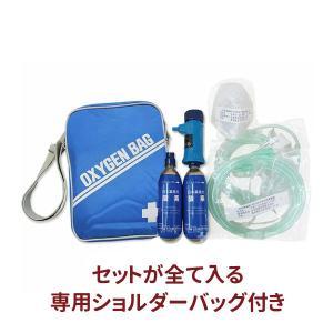 送料無料 携帯酸素吸入器 活気ゲン2(残量表示機能なし・カートリッジ2本と携帯用バッグ付)小型 軽量 旅行 外出 緊急 応急処置 医療機器〔F〕 即納|satuma