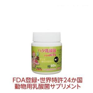 ハタ乳酸菌 FOR PETS ペット用 60g(計量スプーン...