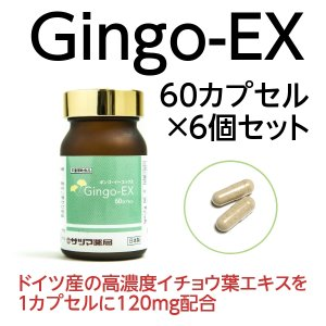 イチョウ葉エキス サプリメント Gingo-EX(ギンゴイーエックス) 60カプセル×6個セット いちょう ギンコ 健康食品 栄養補助 即納|satuma
