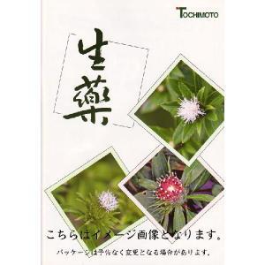 連銭草(刻) 500g レンセンソウ/カキドオシ〔栃本天海堂/生薬〕|satuma