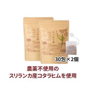 トウスッキリ茶 60包 ダイエット カロリーカット 糖質制限 カロリーオフ サラシア〔漢方のサツマ薬局〕|satuma