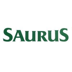 SAURUSウィンドウデカール(湾曲) M|saurus-direct-shop