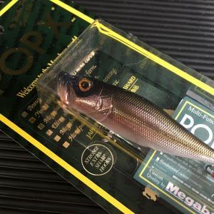 ポップX メガバス color:WAGIN KAWAMUTSU / MEGABASS POP-X 旧モデル 蔵出し新品|saurusking