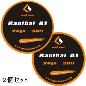 *1000均* VAPE Wire Kanthal A1 24Ga 30ft 2個セット / カンタル ワイヤー saurusking