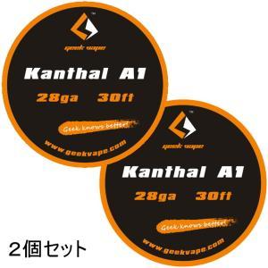 *1000均* VAPE Wire Kanthal A1 28Ga 30ft 2個セット / カンタル ワイヤー saurusking