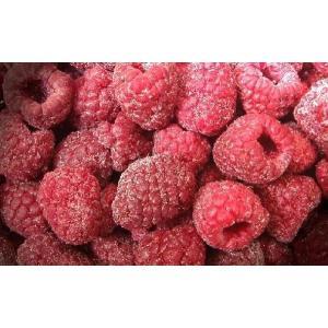 冷凍フルーツ ラズベリー 1kg