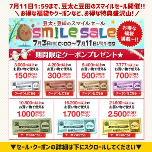 コーヒー 珈琲 コーヒー豆 送料無料 ブラジル ダ・テーラ 農園 1.5kg 150杯分 福袋 グルメ sawaicoffee 04