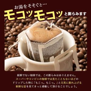 コーヒー 珈琲 ドリップコーヒー 送料無料 1分で出来る コーヒー専門店の ドリップバッグ の お試し 20杯福袋 グルメ|sawaicoffee|11