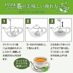 コーヒーの葉で作ったお茶 トリゴネコーヒー茶 15袋(テトラパック) グルメ sawaicoffee 04