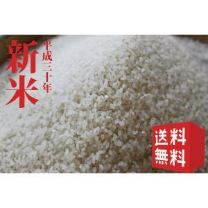 京都丹波日吉産「イセヒカリ」玄米5kg 送料無料
