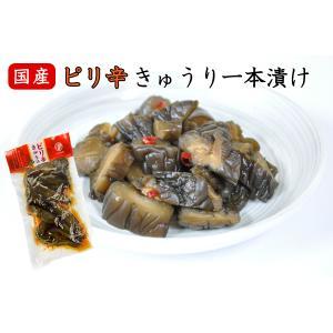 ピリ辛きゅうり一本漬 国産 漬物 醤油漬け 胡瓜 製造元直送 sawatsuke